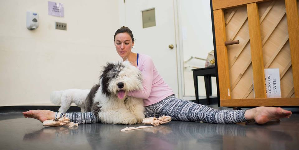 American-ballet-theatre-the-dogist-bobtail