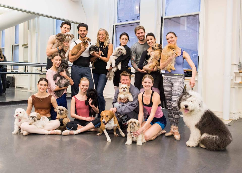 American-ballet-theatre-the-dogist