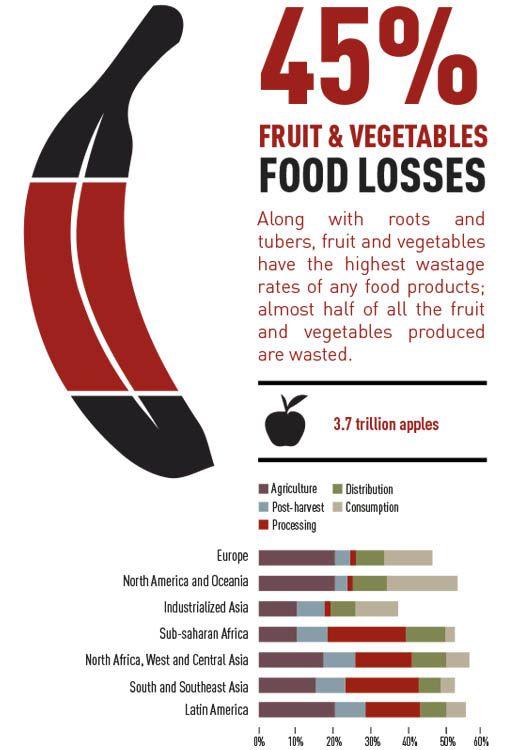 infografica-spreco-alimentare